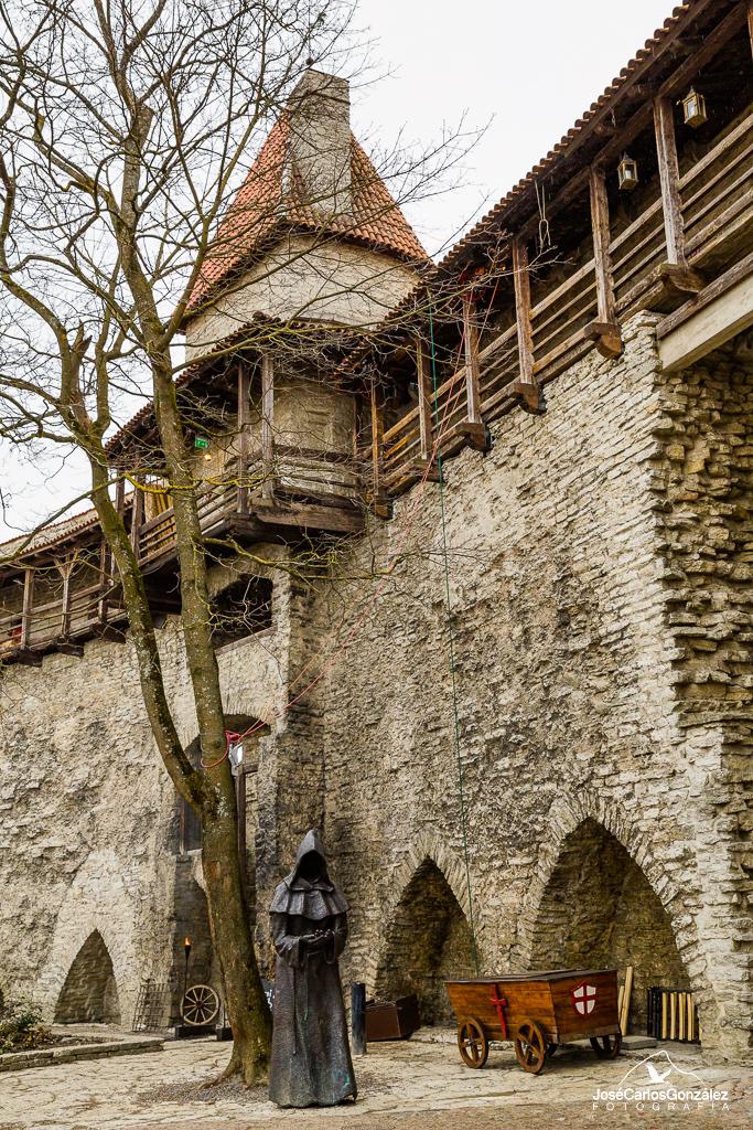 Tallin - Jardines del Rey Danés