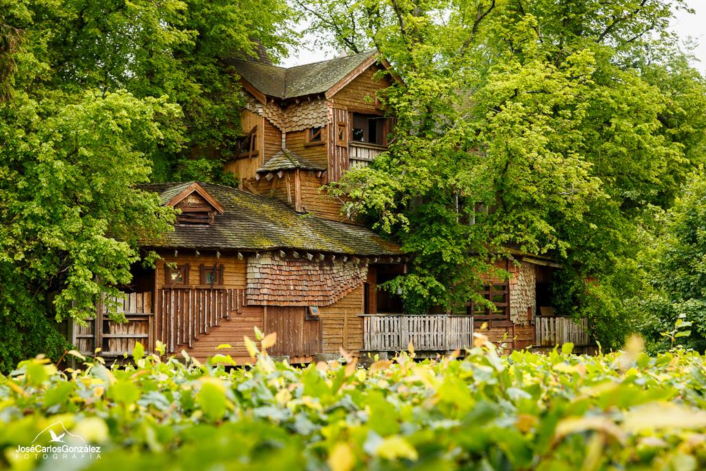 Alnwick - Casa de arbol
